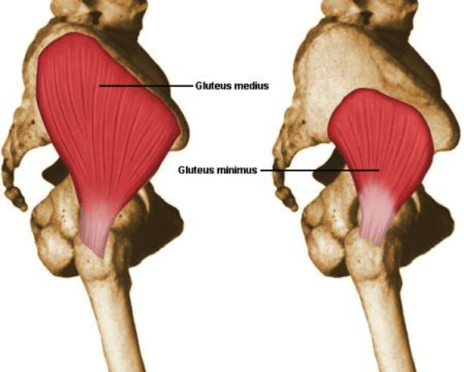 artrosi-anca-idrokinesiterapia