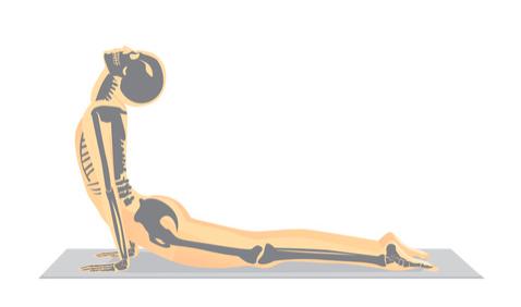 esercizi di ginnastica posturale per l'ernia del disco