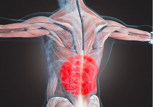 La lombalgia cause e cure
