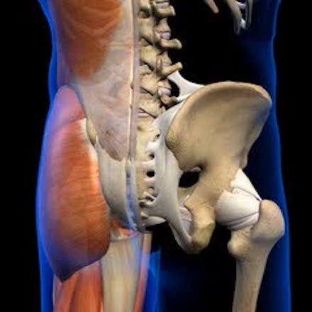 cause dolore anca e schiena